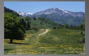 location pyrenees
