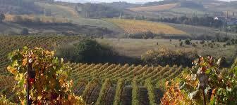 route des vins aude