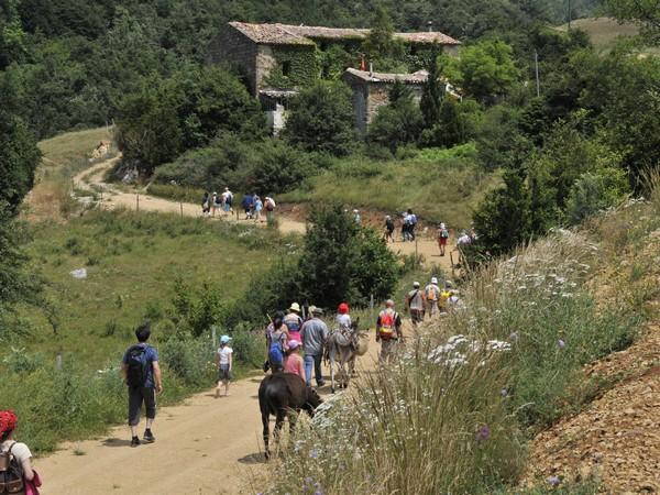 Chemin de randonnée au travers de l'Aude non loin du camping