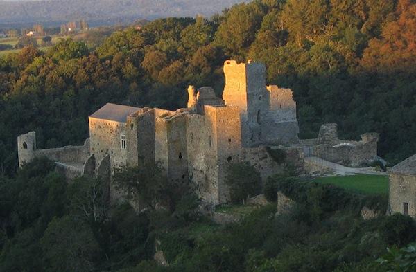 5 fils de Carcassonne proche camping Aude