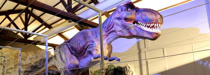 Dinosoria - musée des dinosaures